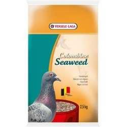 Seaweed Meeresalgen und...